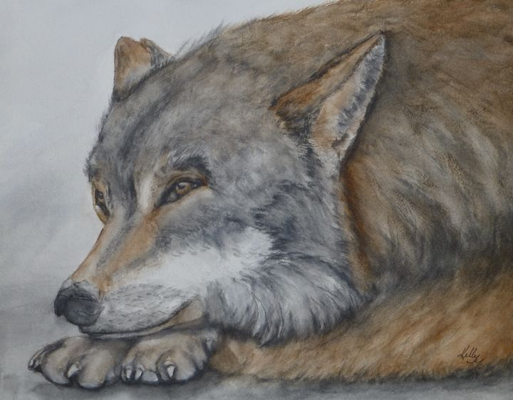 Red Wolf Original Painting - Kelly Mills Paintings