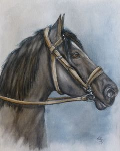 Horses Best Side Original Painting