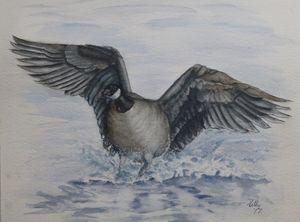 Canada Goose Original Painting