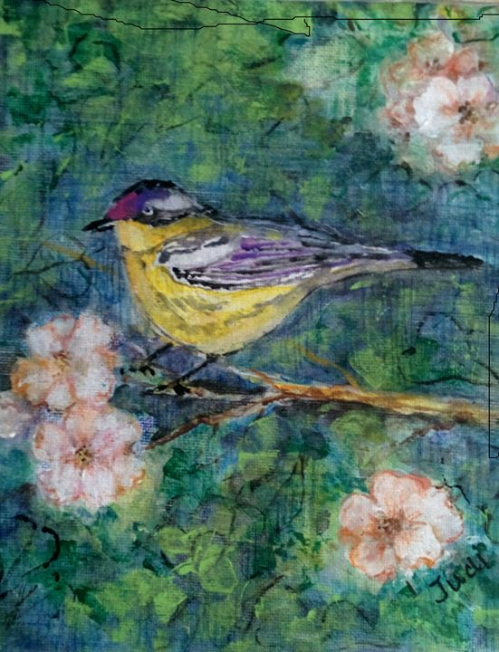 Fancy Finch - Art By Judi