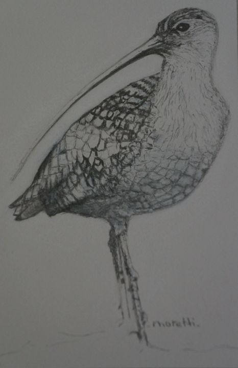 Shorebird - Carmen Fine Art Gallery
