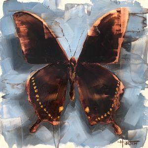 Butterfly No. 42