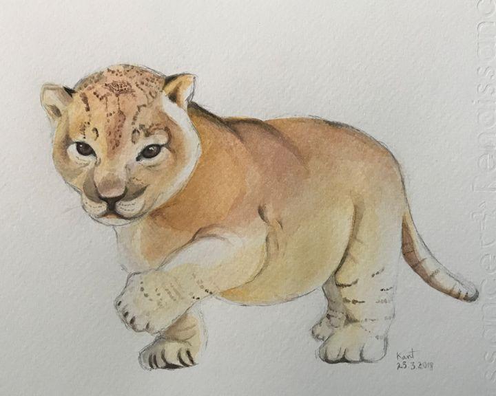 Lion cub - Kant