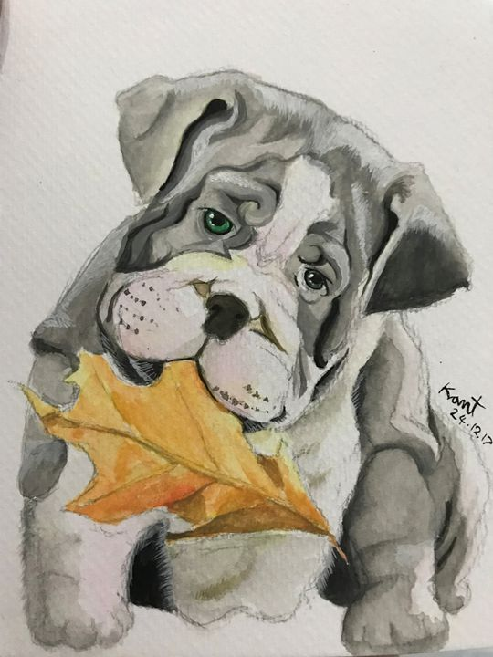 Pit bull with leafs - Kant