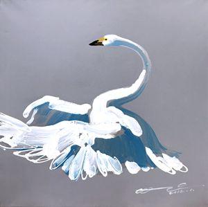 """Jonson Wang 209 39×39"""" Swan"""