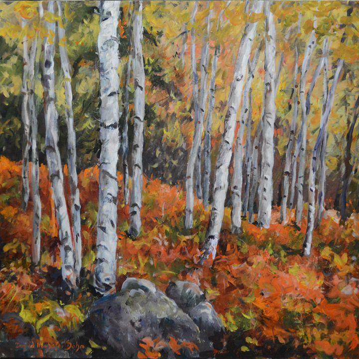 Birch Trees - Ingrid Dohm