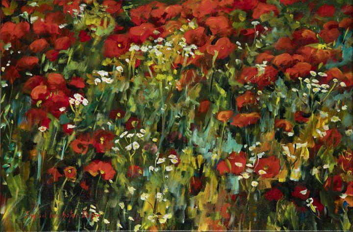 Poppies - Ingrid Dohm