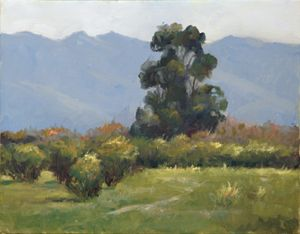 Rainy Day in Tucson - Ingrid Dohm