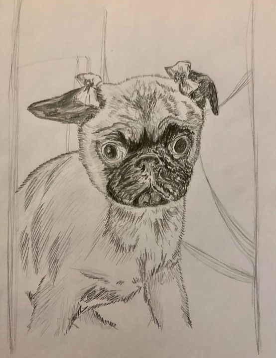 Baby pug with Barrettes - Art by Langston Studios