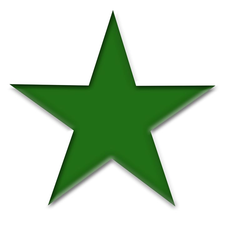Large Green Solid Star on White - Laura Nybeck's Art