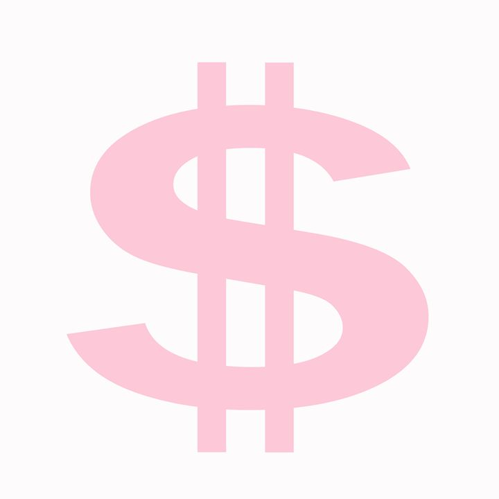 Pink Large Dollar Sign - Laura Nybeck's Art