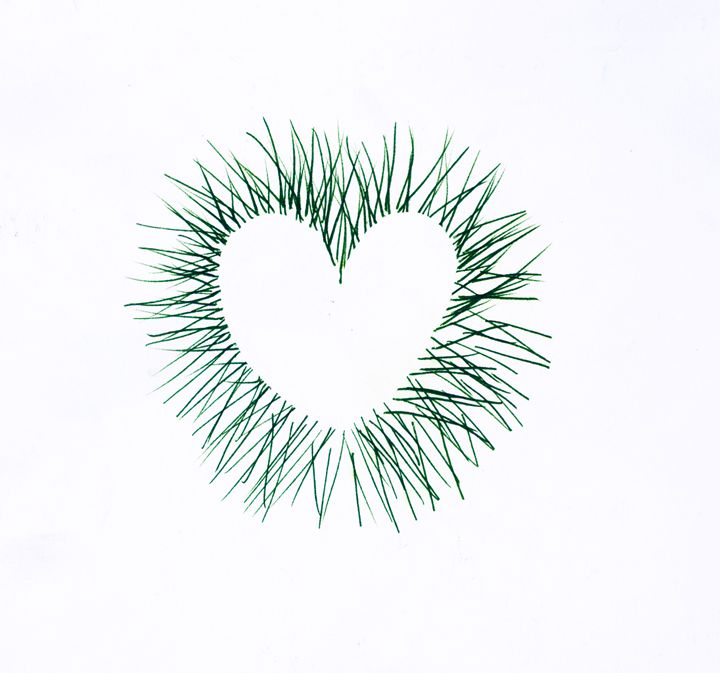 Green Pen and Ink Heart on White - Laura Nybeck's Art