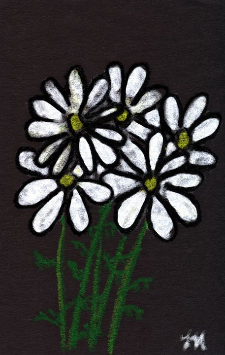 Oil Pastel Daisies on Black - Laura Nybeck's Art
