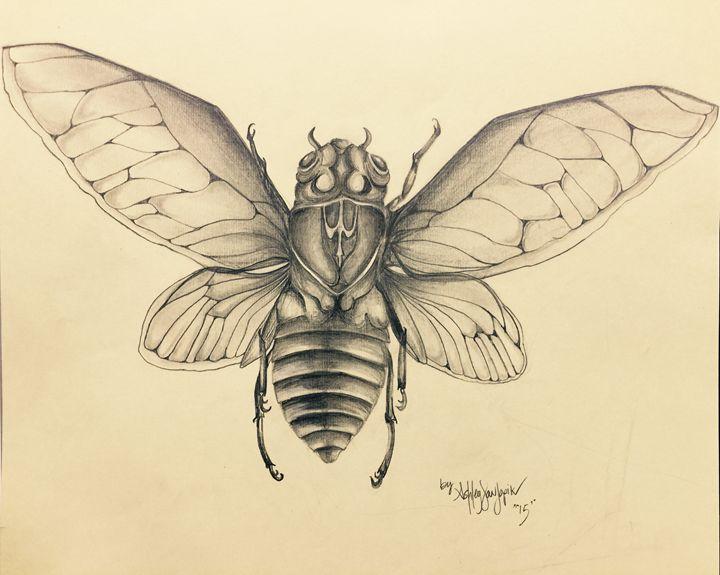 Cicada 1 - TextureForTheSoul