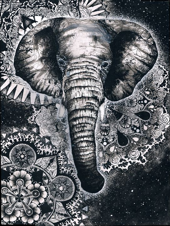 The Elephant - Andromeda