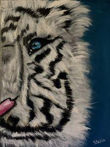 Fluffy White Tiger