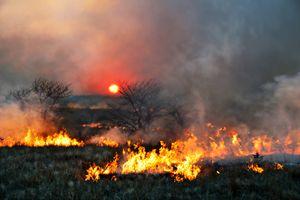 Prairie Burn Sunset in Kansas - Catherine Sherman