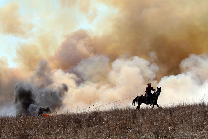 Rancher Starting Controlled Burn - Catherine Sherman