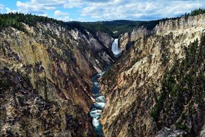Lower Yellowstone Falls - Catherine Sherman