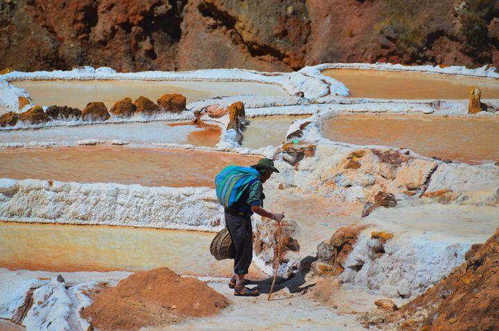 Harvesting Salt in Peru - Catherine Sherman