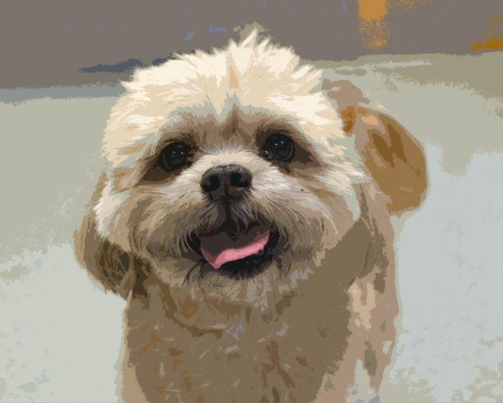 Happy Shih Tzu Dog - Catherine Sherman
