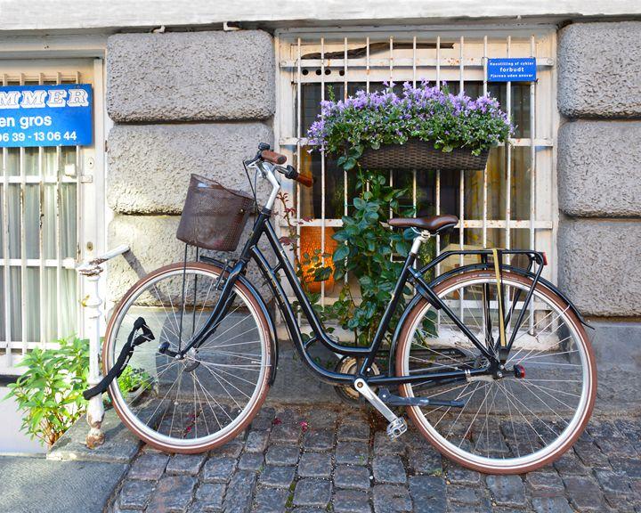 Bike Parking Prohibited, Copenhagen - Catherine Sherman