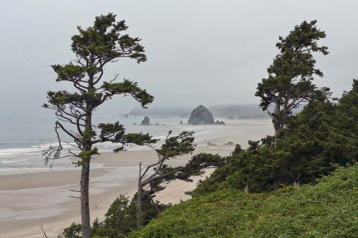 Foggy Morning, Cannon Beach, Oregon - Catherine Sherman