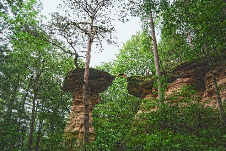 Dog Jumping, Stand Rock, Wisconsin - Catherine Sherman