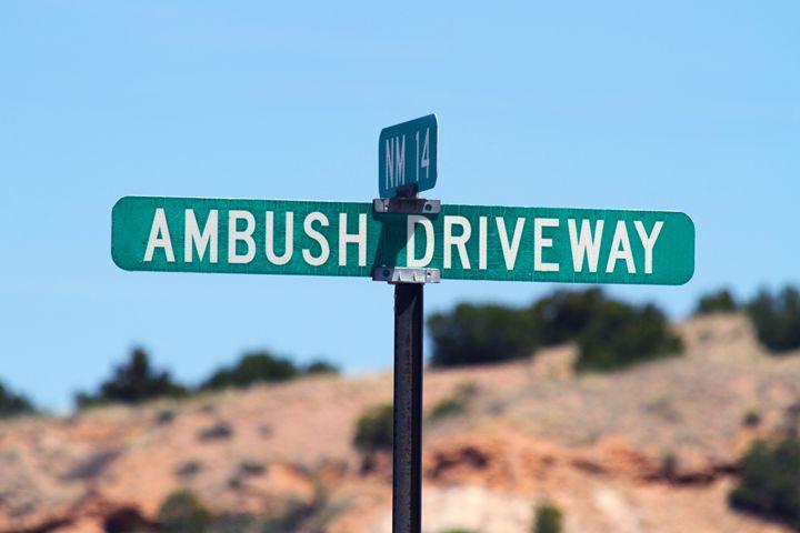 Ambush Driveway in New Mexico - Catherine Sherman
