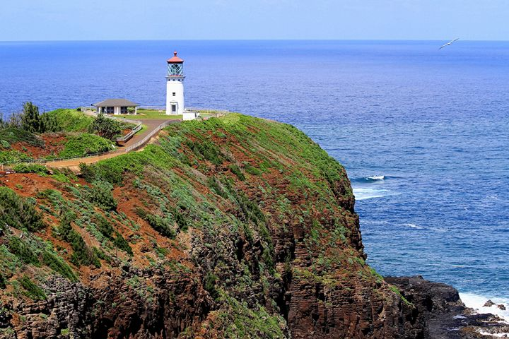 Kilauea Point Lighthouse - Catherine Sherman