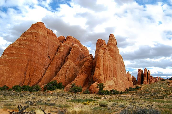 Sandstone Fins, Arches National Park - Catherine Sherman