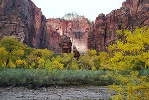 Temple of Sinawava, Zion in Utah - Catherine Sherman