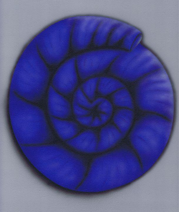 Ammonite - Kenneth Clarke Artist.