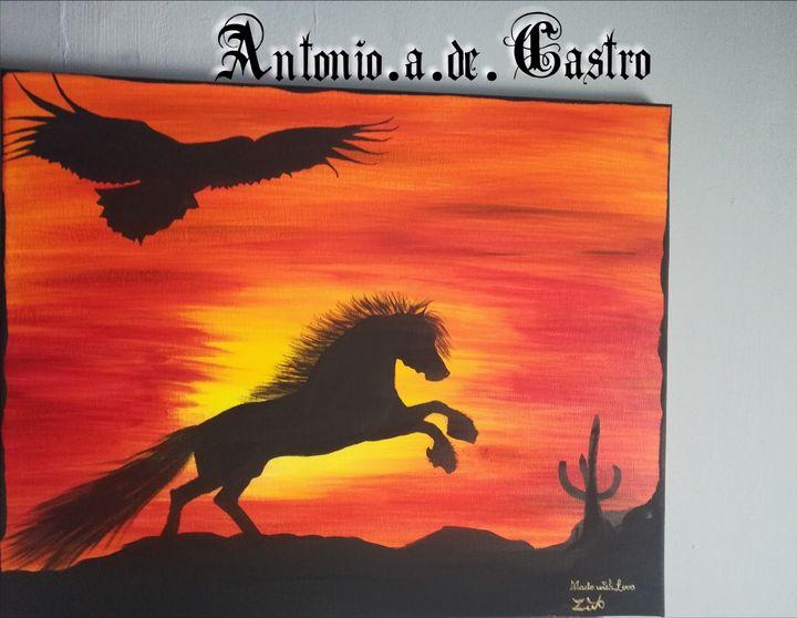 ARIZONA DESERT - Antonio.A.De.Castro art