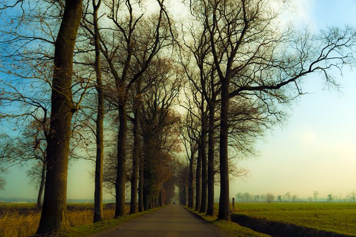 Out of Bruges - Renato Navarro Photography