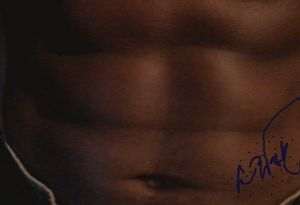 the muscle abs