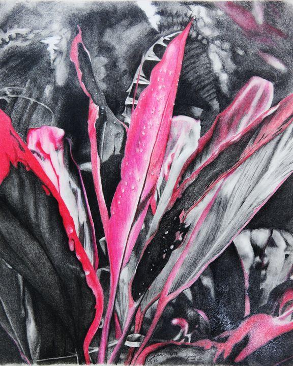 Cordyline Fire - IvyRadicans Art