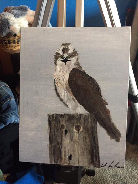 Montana Osprey - Sarah Kleinhans