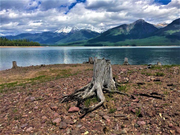 Timeless Montana - Sarah Kleinhans