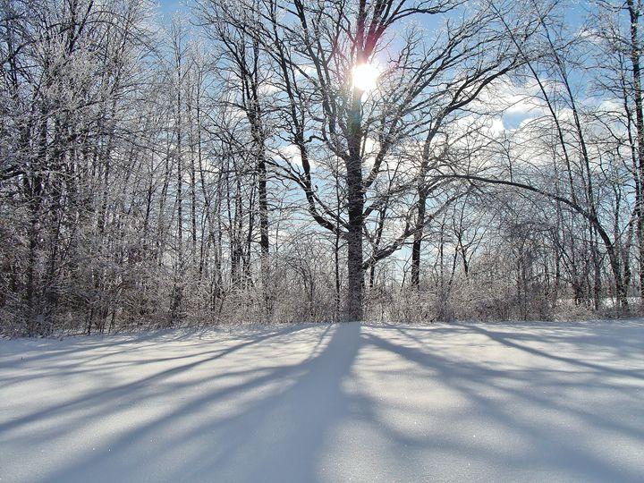Winter Solstice Tree - Marie Dunn