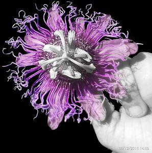 Purple passion - PouringMyArtOut