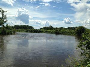 River II