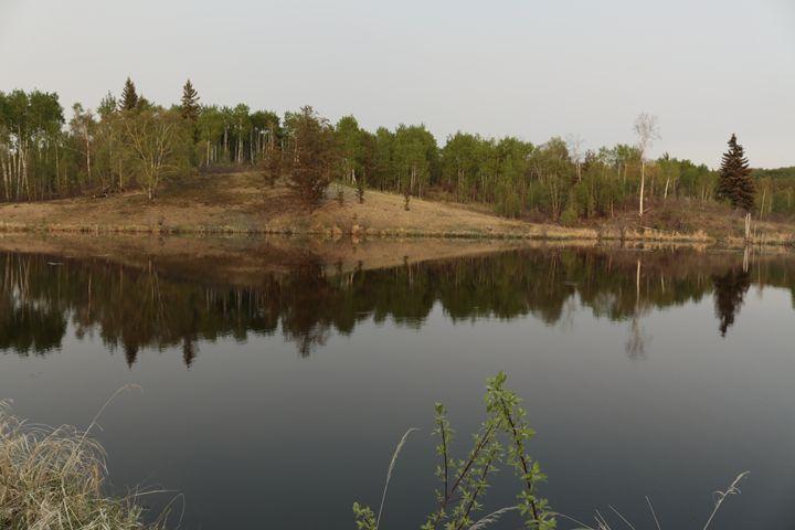 Beaver lake - Oleksandr Liashenko Art