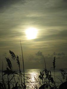 awaken sun