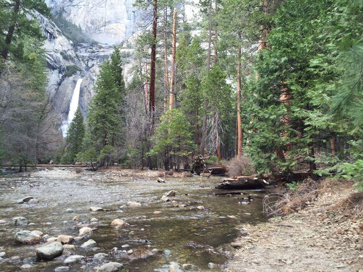 Yosemite Valley Waterfalls - Susan Maletta