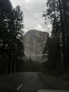 Mystical Entrance to Yosemite