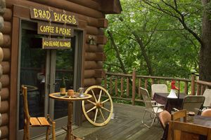 Log Cabin Brad Bucks