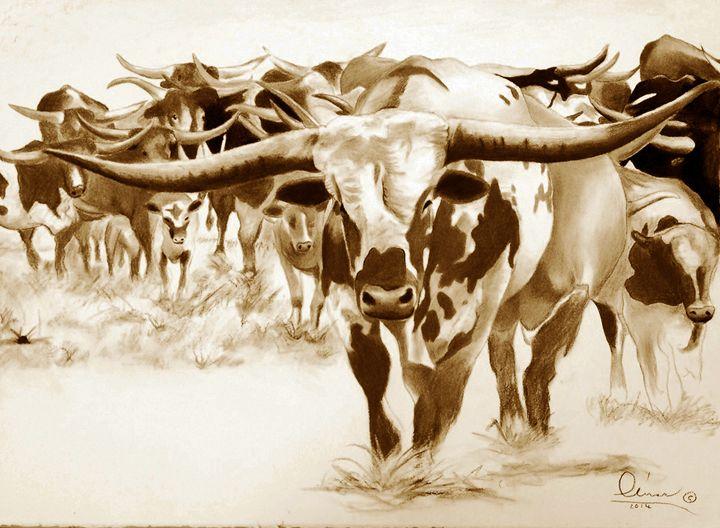 Horns a Plenty - 'The Olivas Collection'