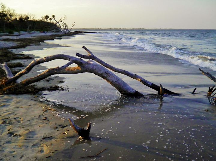 NORTH END OF FOLLY BEACH - C. A. Cerreto Art & Photography
