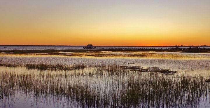 SUNSET CHARLESTON HARBOR - C. A. Cerreto Art & Photography